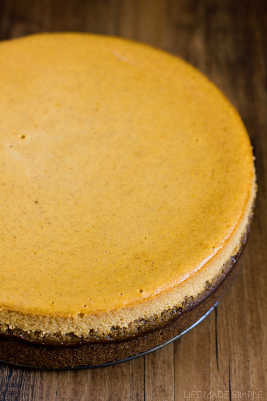 ... gingersnap crust pumpkin cheesecake with a with gingersnap crust