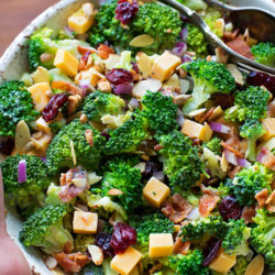 Broccoli Salad with Lemon Poppy Seed Yogurt Dressing | lifemadesimplebakes.com