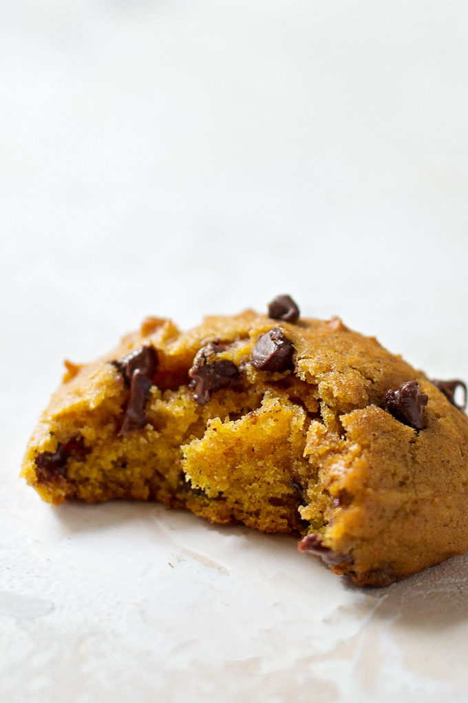 Pumpkin chocolate chip cookies recipe southern living for Pioneer woman fall collection 2017