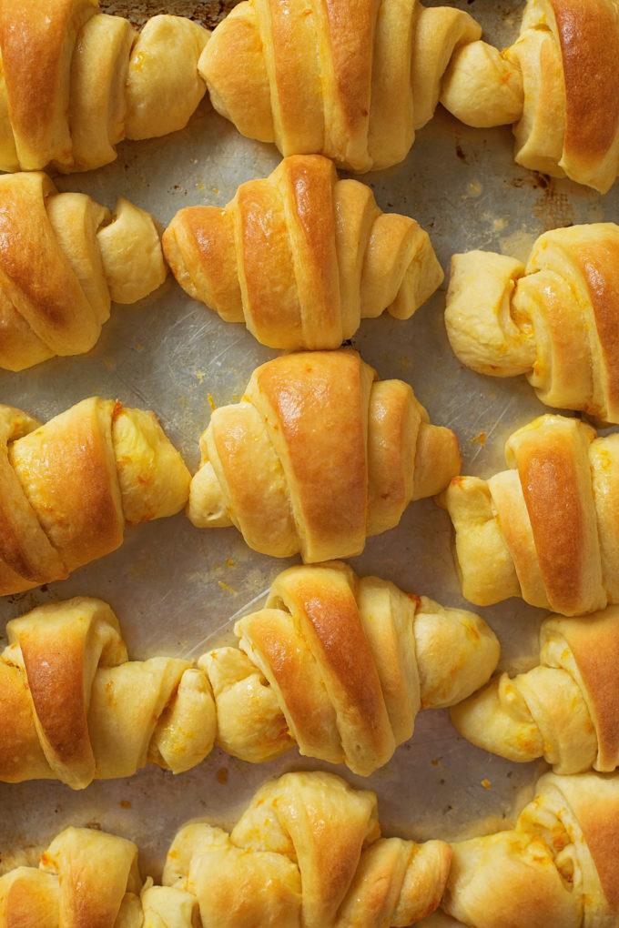 A sheet full of freshly baked orange dinner rolls.