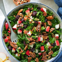 Cranberry Apple Pecan Kale Salad