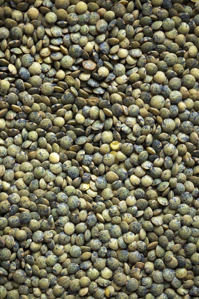 A detailed shot of the lentils used in easy vegetable lentil soup.