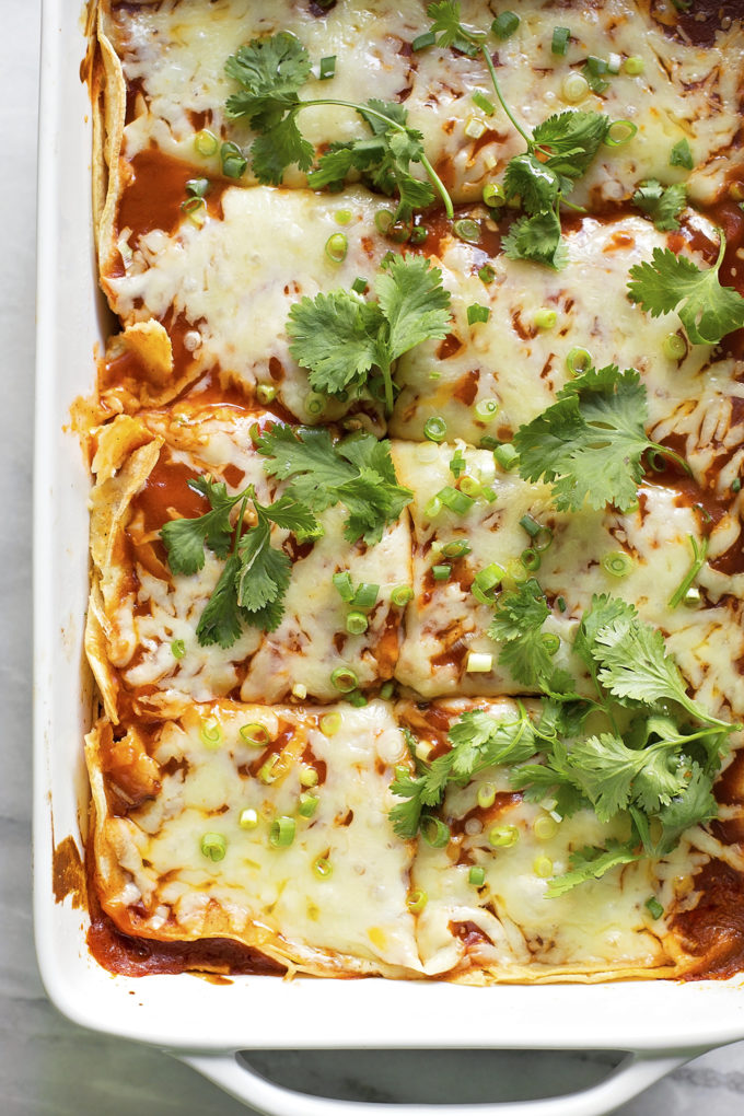 A 9x13-inch dish with portioned chicken tortilla casserole.