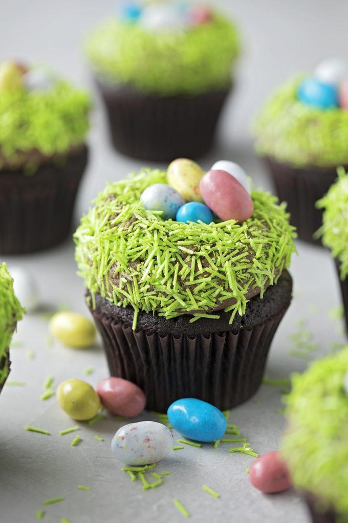 Rich, dark, malted chocolate nest cupcakes.