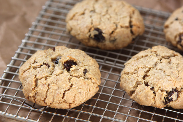 Biscoff Oatmeal Raisin Cookies - Life Made Simple